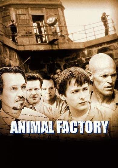 animalfactory1.jpg